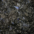 GALLATICA BLUE - EXOTIC