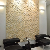 Indoor Feature Wall